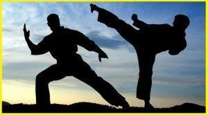 Deportes de artes marciales