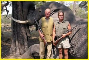 Deportes de caza y pesca