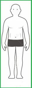 Cuerpos enfomorficos